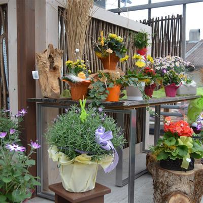 Blumenstöcke mit Deko