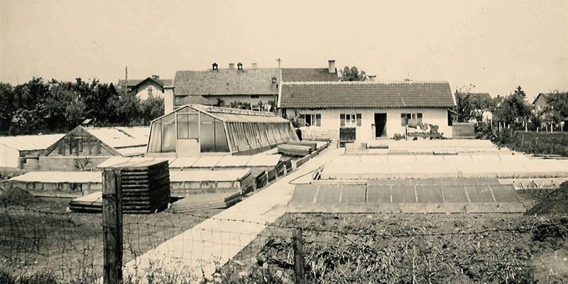 Historie-Gaertnerei-1960